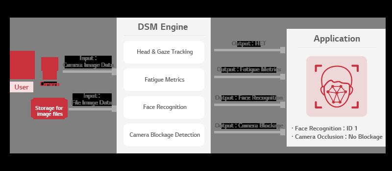 Architecture of DSM Engine